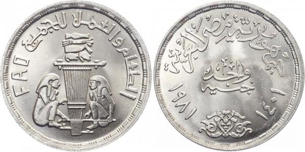 Ägypten 1 Pfund 1981 - F.A.O.