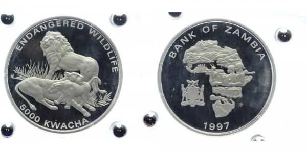 Zambia 5000 Kwacha 1997 - Löwenfamilie