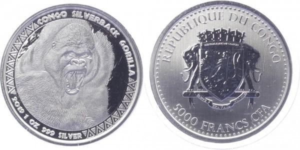 Kongo 5000 Francs 2019 - Silberrücken Gorilla
