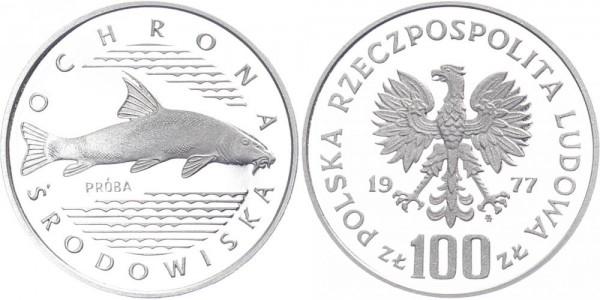 Polen 100 Zlotych 1977 - Katzenfisch