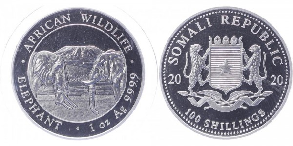 Somalia 100 Shillings 2020 - Elefanten
